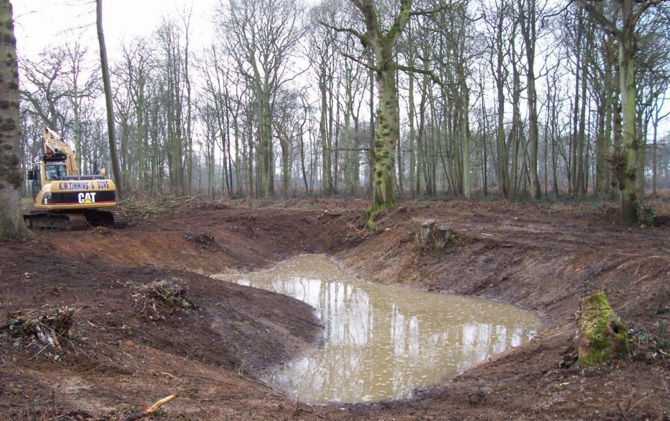Pond & Lake Construction